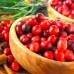 Клюква крупноплодная «Рубиновая россыпь»